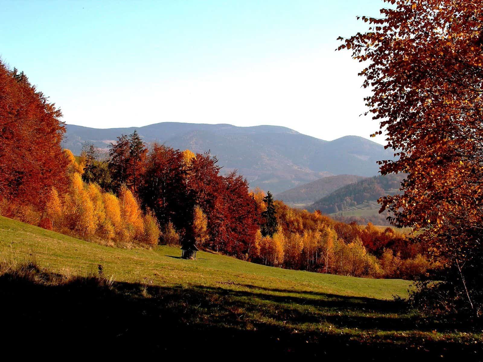 Autor: Rudolf Pellionis 2013© všetky práva vyhradené Dobsinske_kopce_na_jesen_pohlad_z_Vincovky_